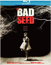 The Bad Seed (Blu-ray Disc)