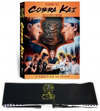 Cobra Kai: Seasons 1 & 2 (DVD)