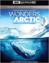Wonders of the Arctic (4K UHD Review)