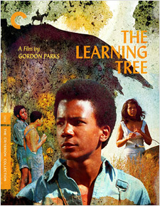 The Learning Tree (Blu-ray Disc)