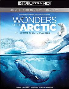 Wonders of the Arctic (4K UHD Review)